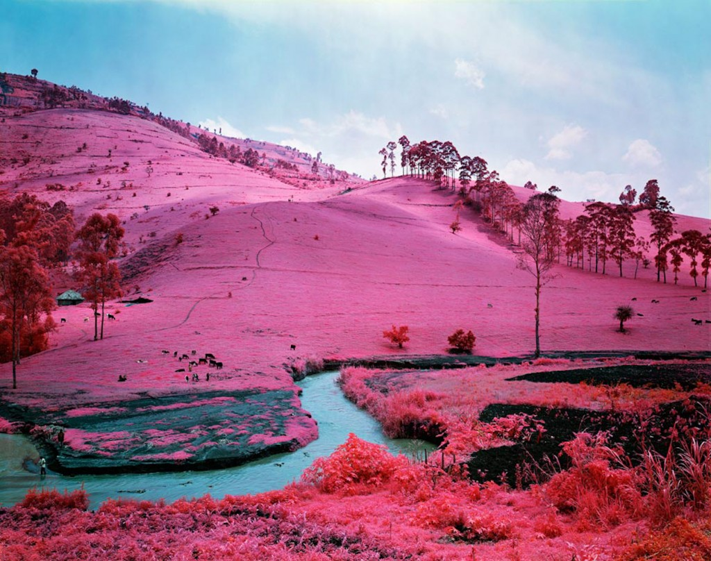 doorofperception.com-richard_mosse-25